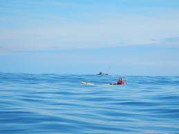 Kayaks Loredo....